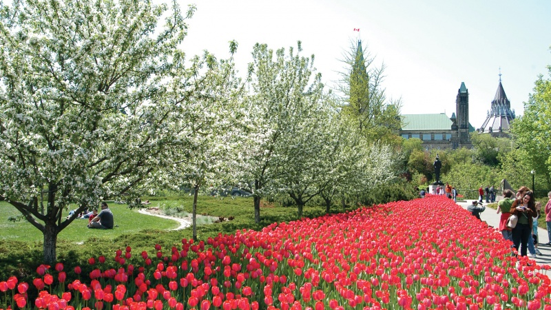 Ottawa, events, spring, May, Gatineau, National Capital Region